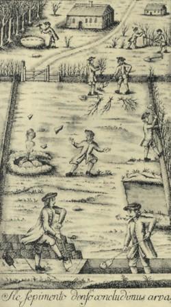 Anweisung zur Anlage von Knicks 1767