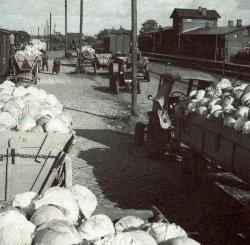 Kohlverladung auf dem Bahnhof Marne in den 1950er Jahren