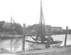 Krabbenkutter im Hafen von Pellworm vor dem Zweiten Weltkrieg