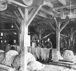Industrielle Lederproduktion in Neumünster. Chromgerbung erlaubt nun im Gegensatz zur althergebrachten Lohgerbung große Mengen Häute zu Leder zu verarbeiten. Das dabei eingesetzte Schwermetall Chrom belastet bis heute Schwale und Stör