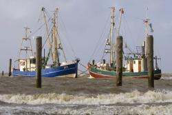 """Die Angst um die Zukunft """"traditioneller Nutzungen"""" wie den Krabbenfang ließen den Widerstand gegen einen Nationalpark wachsen"""