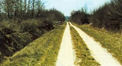 Aus vielen unbefestigten Feldwegen wurden dank der Betonspuren brauchbare ganzjährig befahrbare Wirtschaftswege, die heute auch von Radtouristen gerne für Fahrten durchs Land genutzt werden