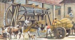 """Gleich nach dem Ernten kam das Zuckerrohr in die """"Mühle"""""""