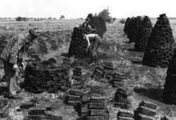 Gestochener Torf wird zum Trocknen gestapelt. Bild aus Dithmarschen