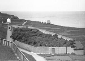 Fanggarten für Zugvögel auf dem Helgoländer Oberland vor dem zweiten Weltkrieg