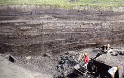 Wie die Wurten Schicht für Schicht erhöht wurden, läßt sich im Schnitt noch heute bei Ausgrabungen klar erkennen